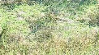 Terreno residencial en Rub�, Sant Mu�. Avda. can bosch. precio negociable. en urbanizaci� Can bosc,77